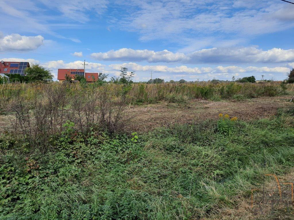Działka budowlana na sprzedaż Jaczkowice  17900m2 Foto 1