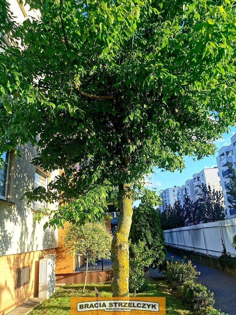 Mieszkanie dwupokojowe na sprzedaż Warszawa, Białołęka, Tarchomin Kościelny, Strumykowa  40m2 Foto 8