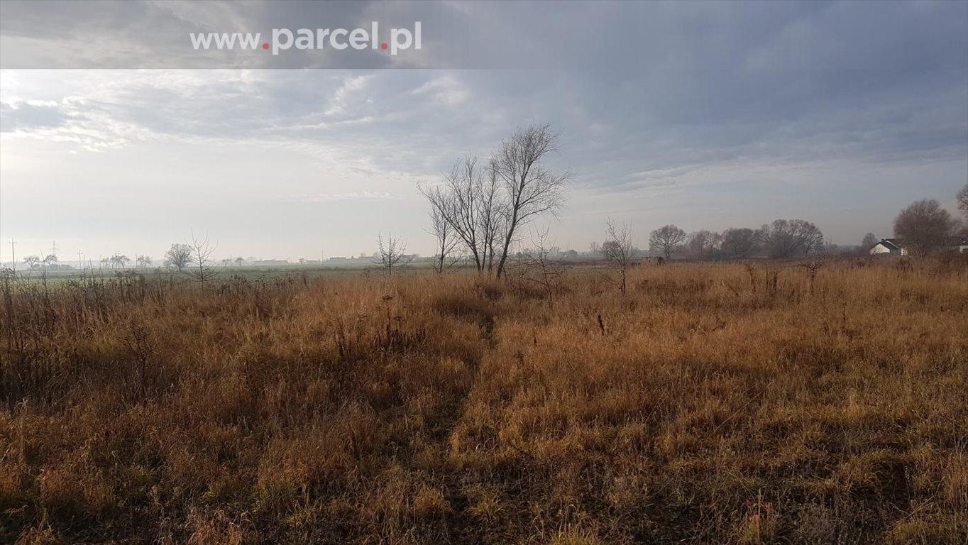 Działka budowlana na sprzedaż Zalasewo, Zalasewo, Piesza  3021m2 Foto 2