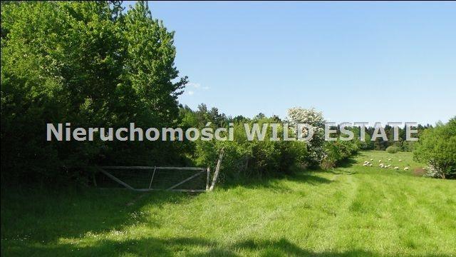 Działka rolna na sprzedaż Ustrzyki Dolne, Jureczkowa  22700m2 Foto 8