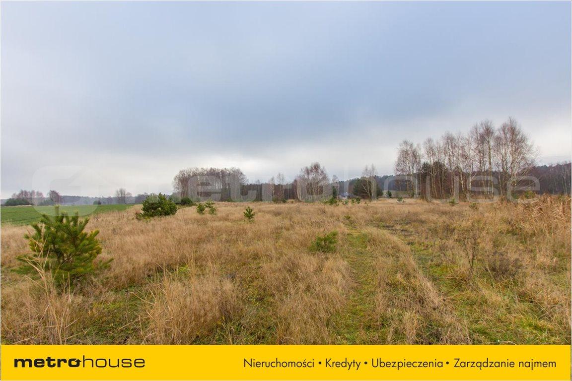 Działka rolna na sprzedaż Jelonek, Borne Sulinowo  30900m2 Foto 5