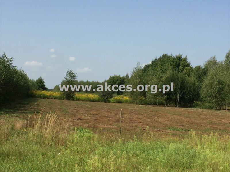 Działka rolna na sprzedaż Zawodne  1200m2 Foto 4