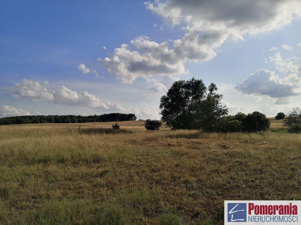 Działka rolna na sprzedaż Wąwelnica  37300m2 Foto 7