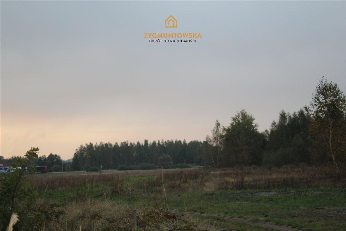 Działka rolna na sprzedaż OPOCZNO, RÓŻANNA  7217m2 Foto 6