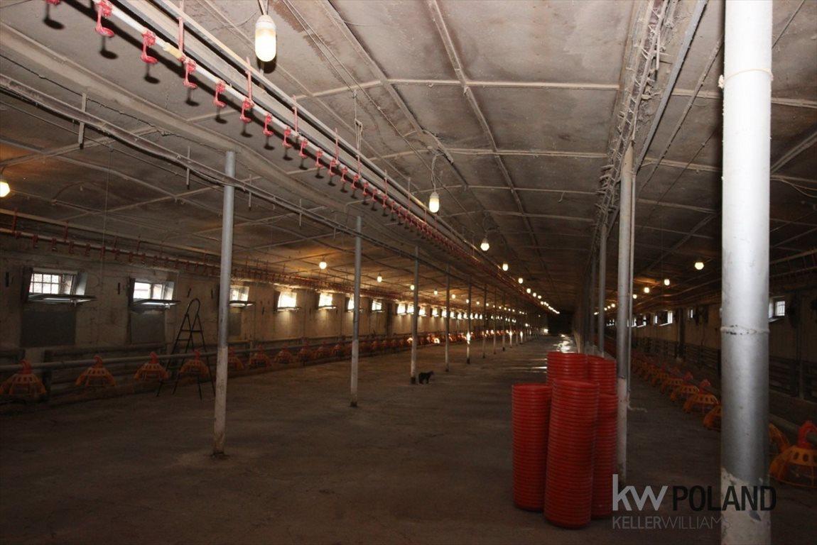 Lokal użytkowy na sprzedaż Dąbrowa Górnicza, Ujejsce, Władysława Broniewskiego  1317m2 Foto 1