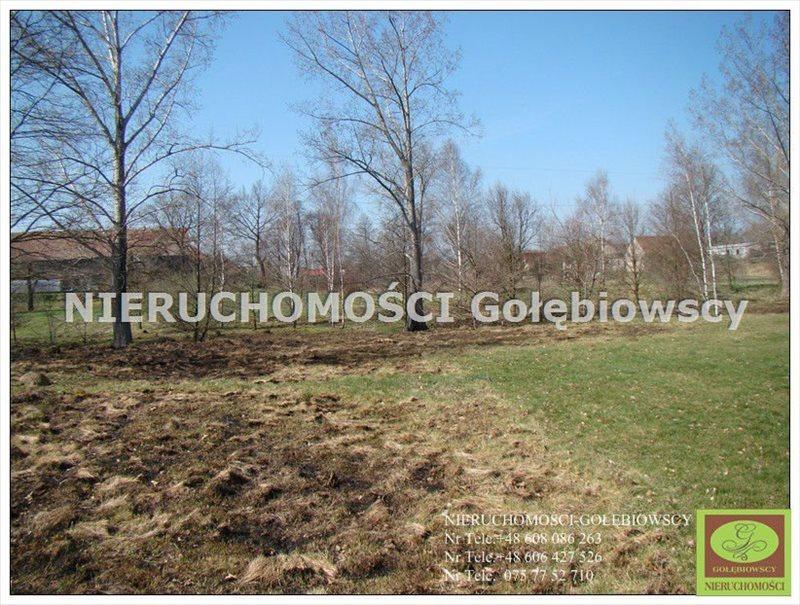 Działka inna na sprzedaż Jędrzychowice  3952m2 Foto 2