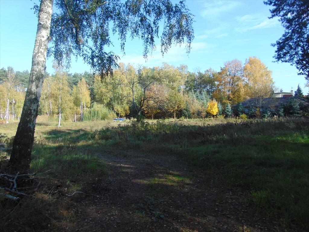 Działka komercyjna na sprzedaż Jerzykowo, Sosnowa  2197m2 Foto 1