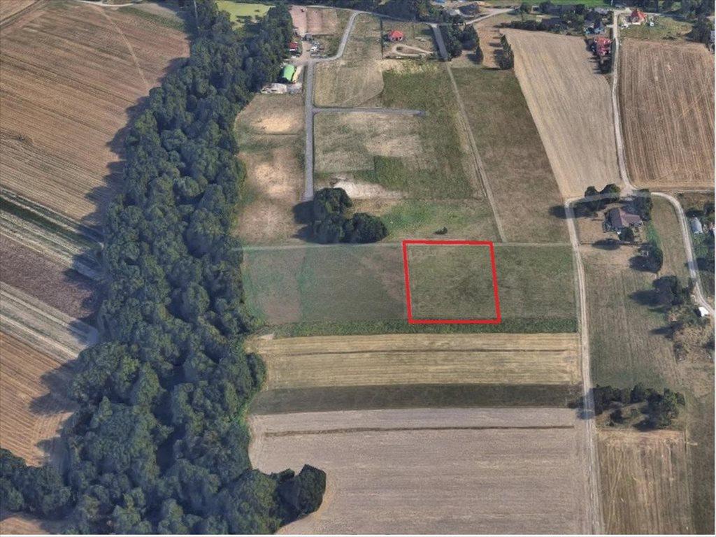 Działka rolna na sprzedaż Mikołów, Mikołów  3260m2 Foto 4