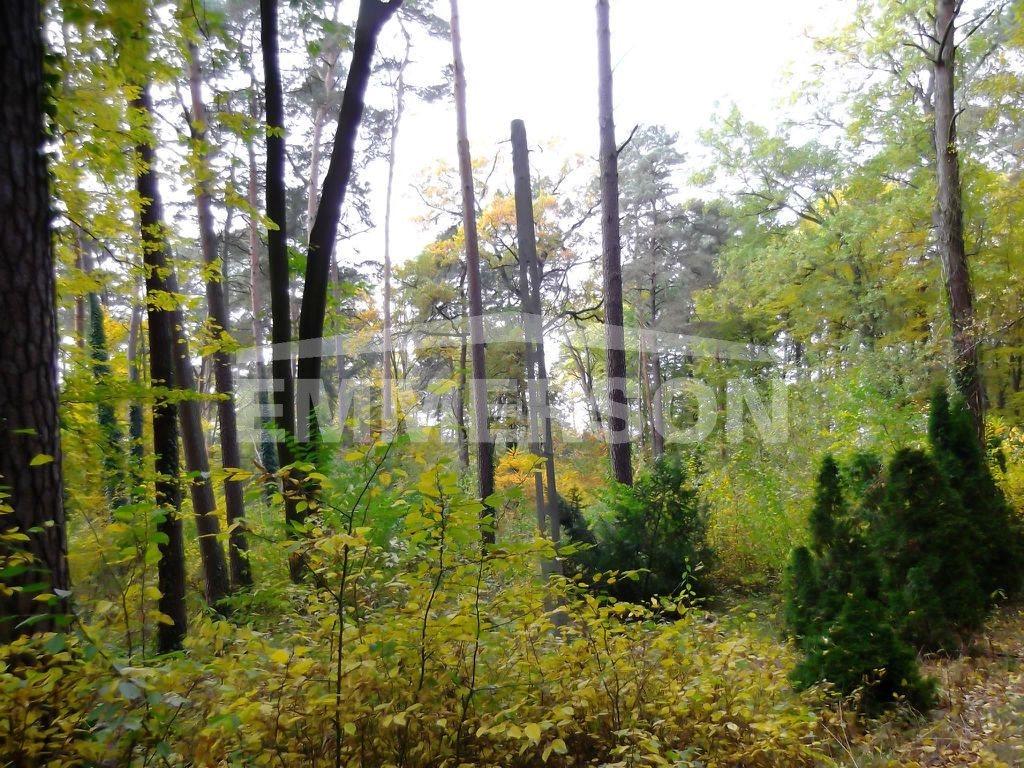 Działka leśna na sprzedaż Piaseczno, Zalesie Dolne  2511m2 Foto 4
