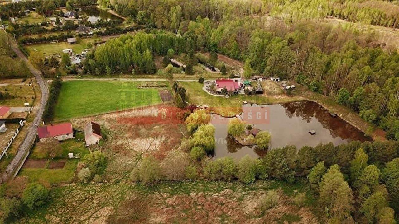 Dom na sprzedaż Lubicz, Ranczo ze stawem i laskiem, ponad hektar  125m2 Foto 2