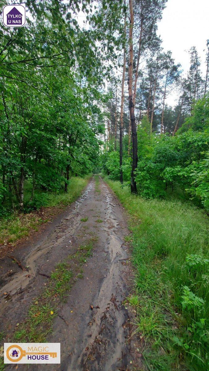 Działka leśna na sprzedaż Gołubie  18900m2 Foto 7