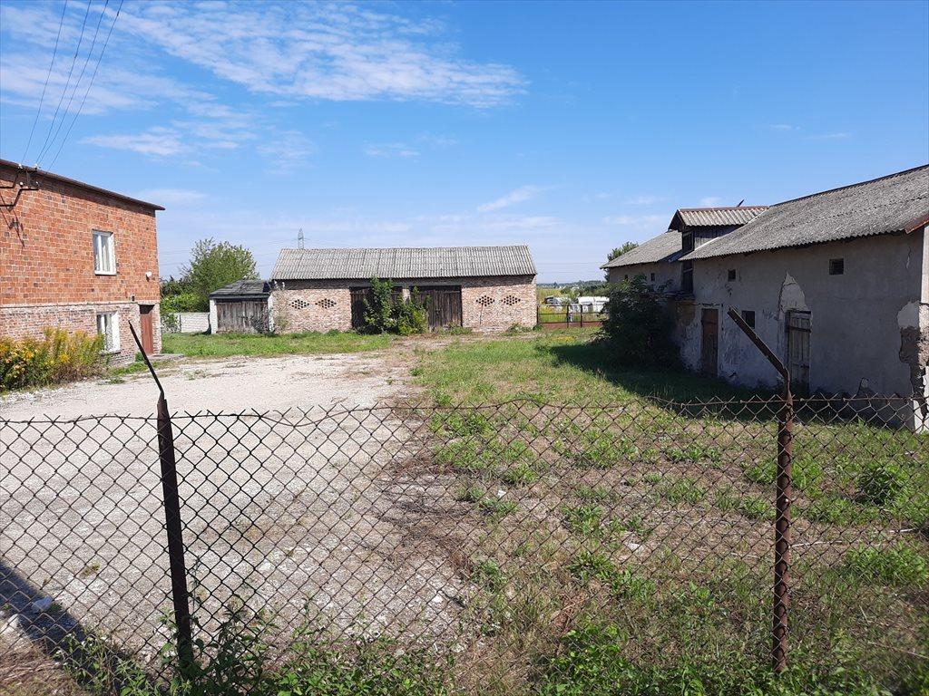 Działka budowlana na sprzedaż Stare Babice, Zielonki-Wieś  24100m2 Foto 2
