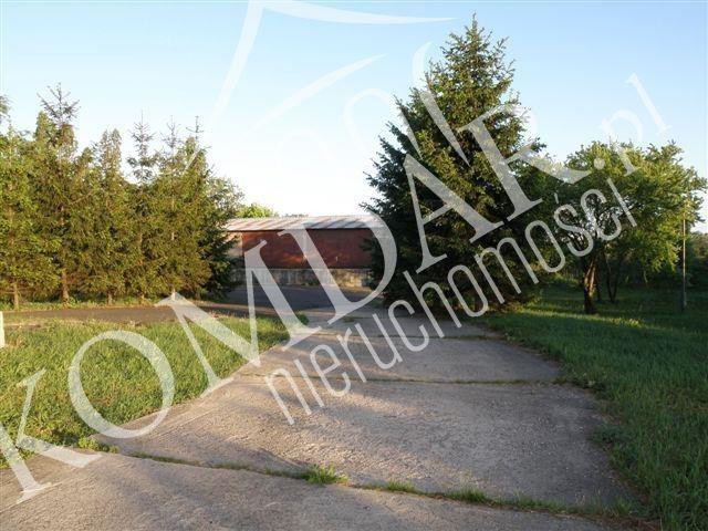 Lokal użytkowy na sprzedaż Szeligi, Szeligi  700m2 Foto 4