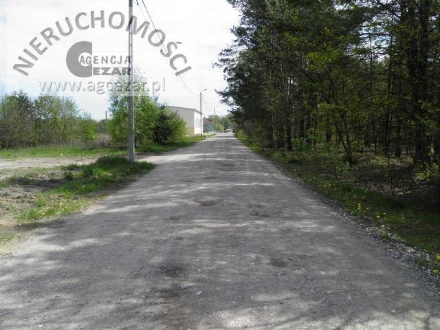 Działka budowlana na sprzedaż Grzebowilk  1500m2 Foto 2