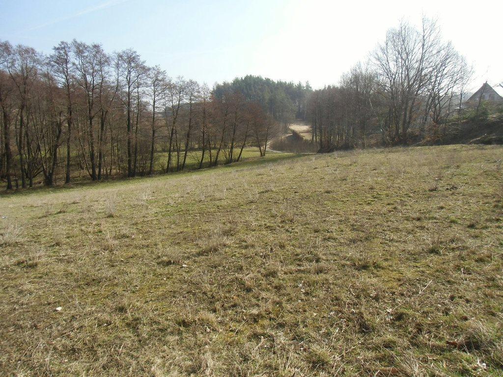 Działka budowlana na sprzedaż Kosowo  1000m2 Foto 7
