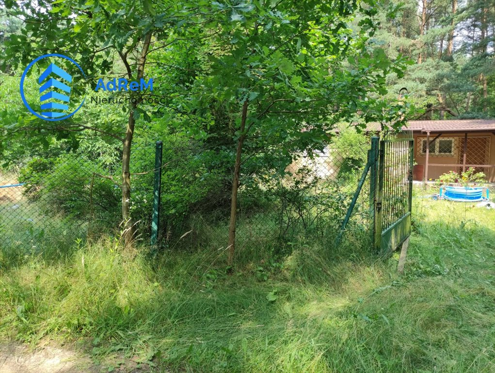 Działka leśna na sprzedaż Korzeniówka, Rysia  2356m2 Foto 4