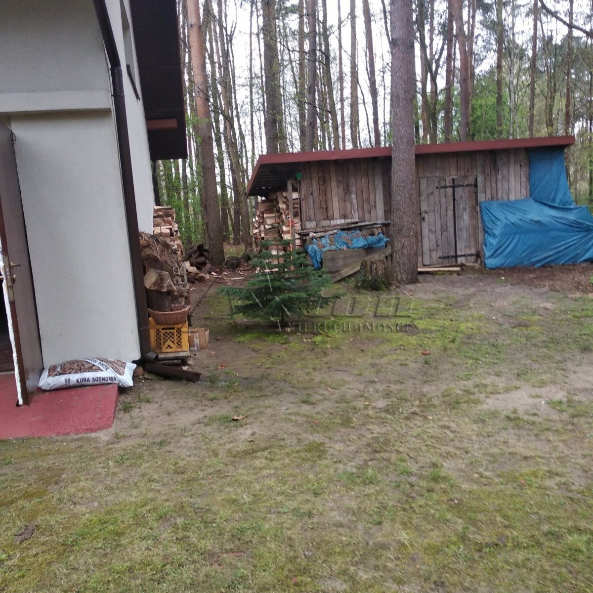 Działka budowlana na sprzedaż Barchów  4200m2 Foto 7