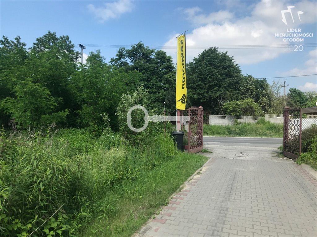 Działka budowlana na sprzedaż Łoś, Prażmowska  4000m2 Foto 1
