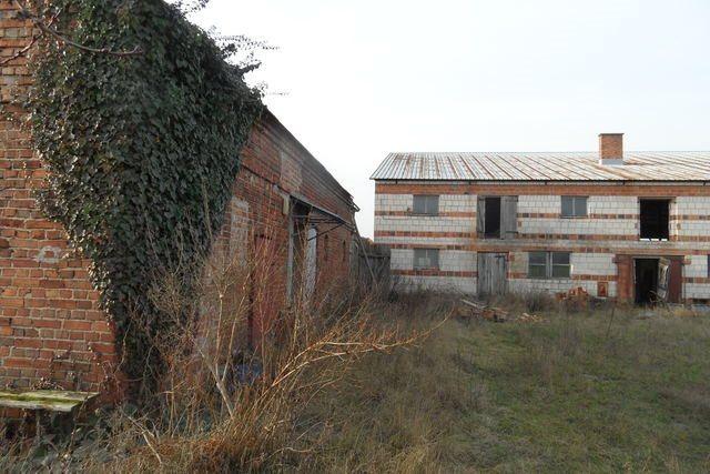 Działka budowlana na sprzedaż Olsza  12000m2 Foto 3