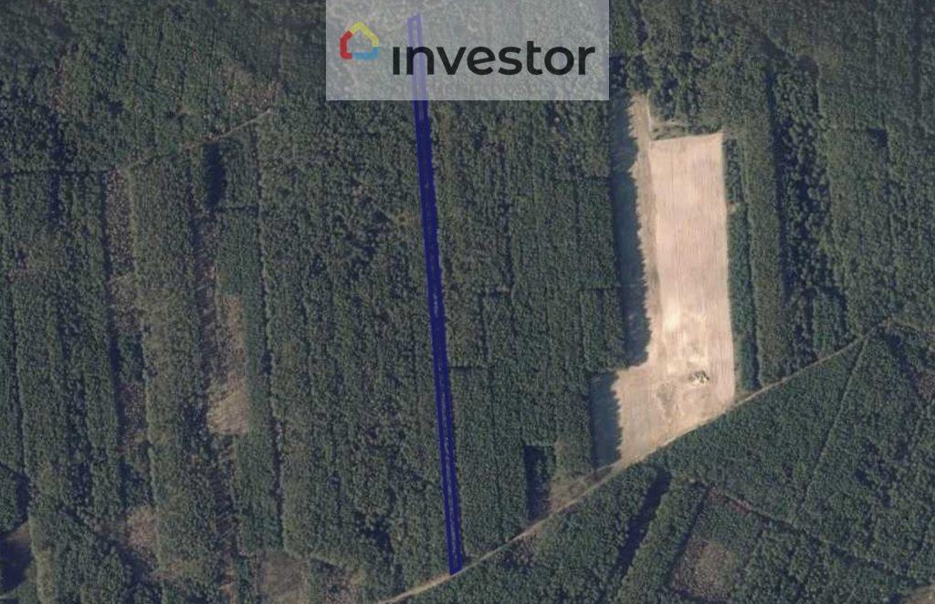 Działka leśna na sprzedaż Grabowiec  7800m2 Foto 1