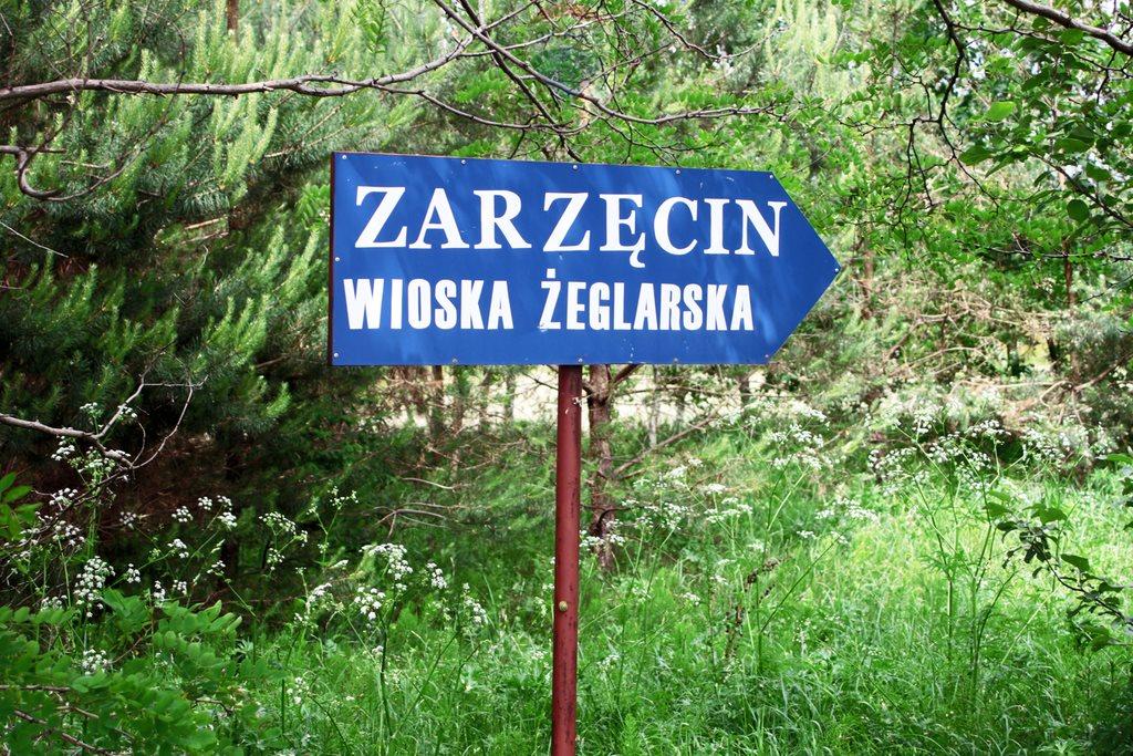 Działka rekreacyjna na sprzedaż Zarzęcin  301m2 Foto 1