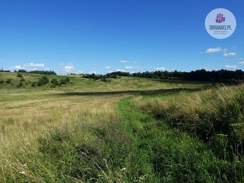 Działka rolna na sprzedaż Orzechowo, gmina Dobre Miasto  17399m2 Foto 5