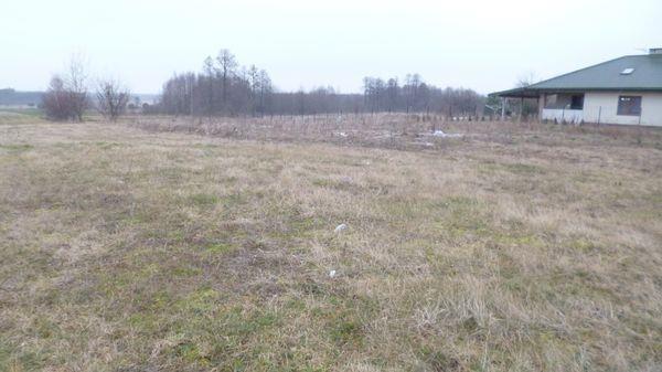 Działka rolna na sprzedaż Radom, Nowa Wola Gołębiowska  11418m2 Foto 7