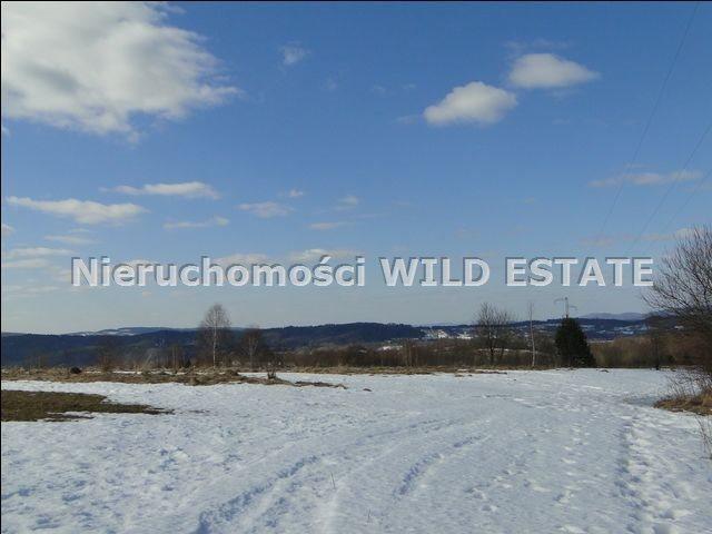 Działka rolna na sprzedaż Lesko, Lesko  4225m2 Foto 7