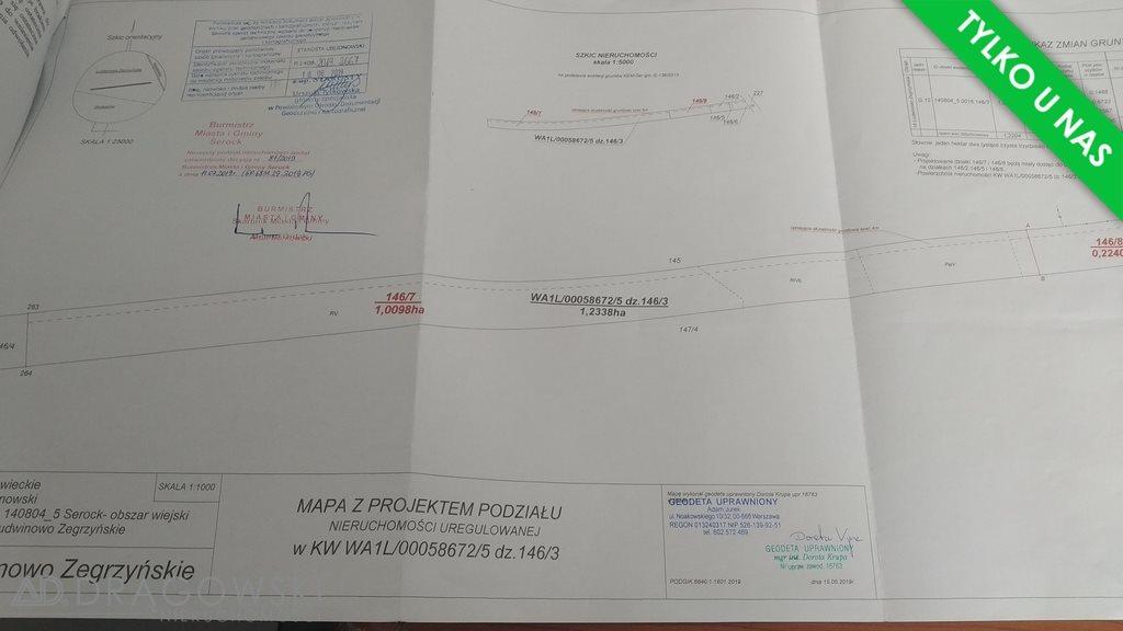 Działka rolna na sprzedaż Ludwinowo Zegrzyńskie  10098m2 Foto 5