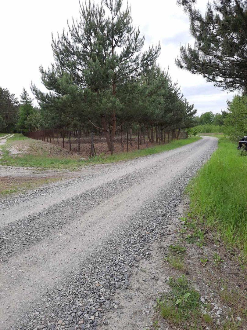 Działka rolna na sprzedaż Mariew  1500m2 Foto 1