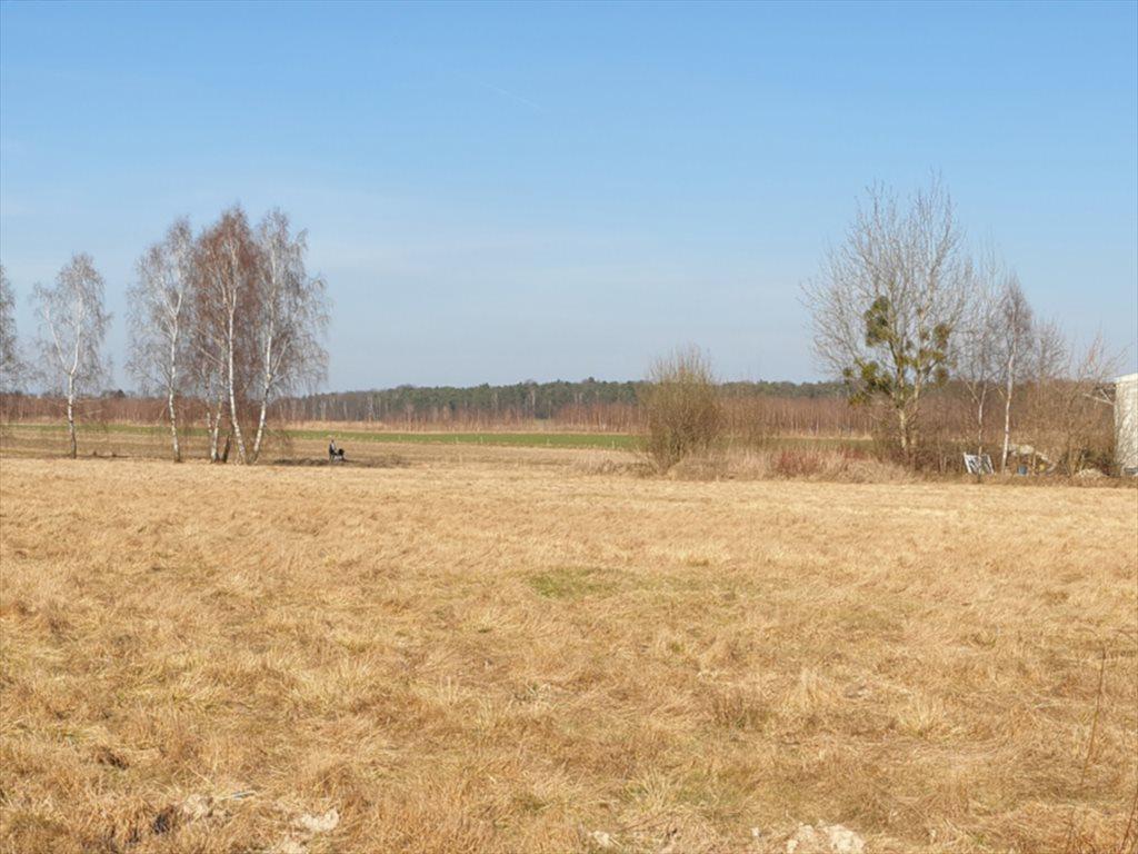 Działka rekreacyjna na sprzedaż Natolin, Nowosolna  4718m2 Foto 3