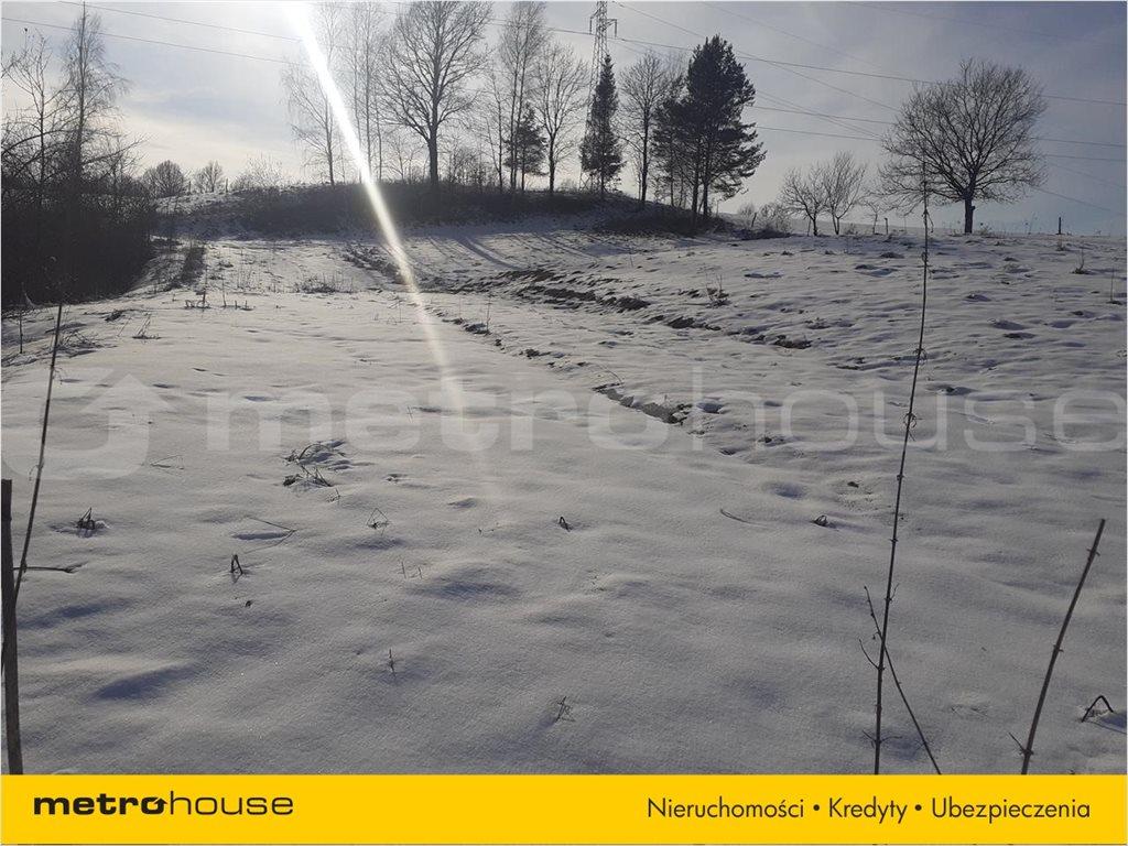 Działka rolna na sprzedaż Orelec, Olszanica  9700m2 Foto 3