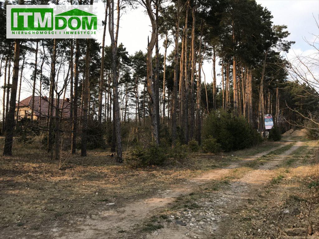 Działka rolna na sprzedaż Ignatki, Przemysłowa  3003m2 Foto 5