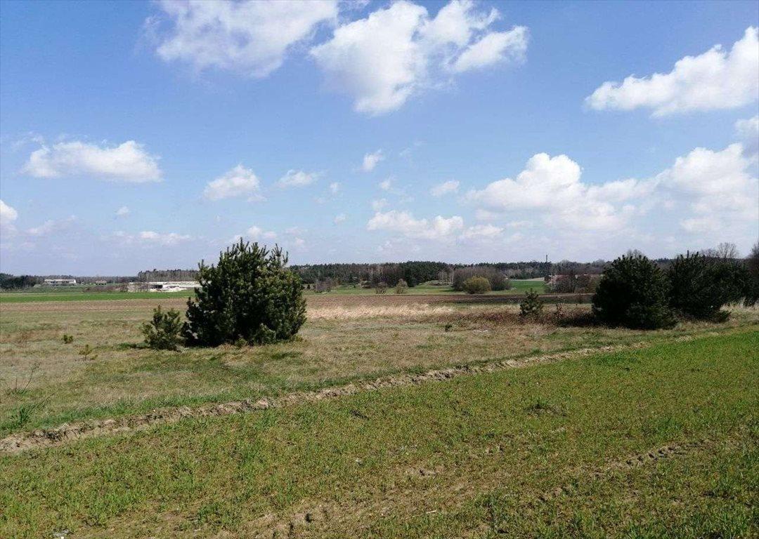 Działka rolna na sprzedaż Porwity  14700m2 Foto 2