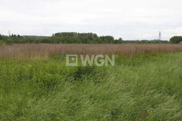 Działka inwestycyjna na sprzedaż Głuchów, Głuchów, Głuchów  7400m2 Foto 1