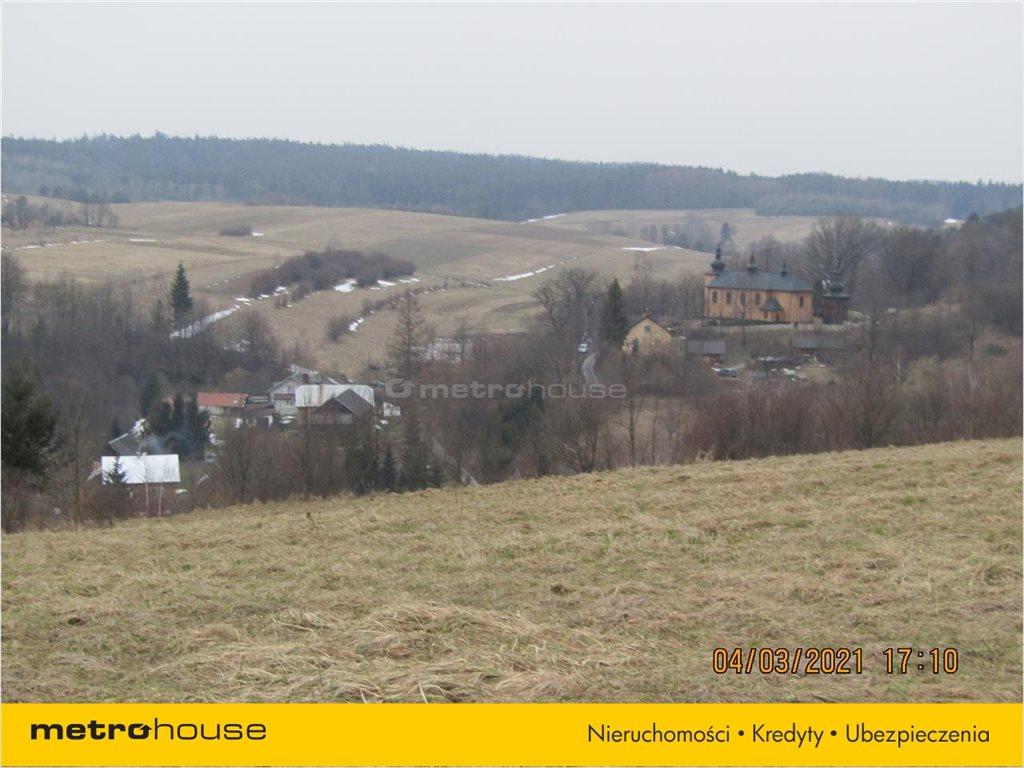 Działka rolna na sprzedaż Morochów, Zagórz  10000m2 Foto 8