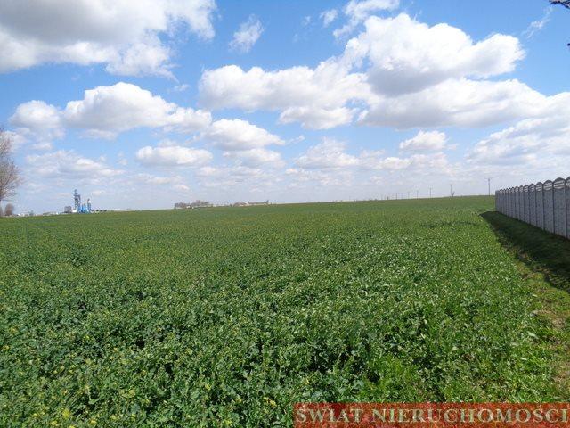 Działka rolna na sprzedaż Głoska  41300m2 Foto 2