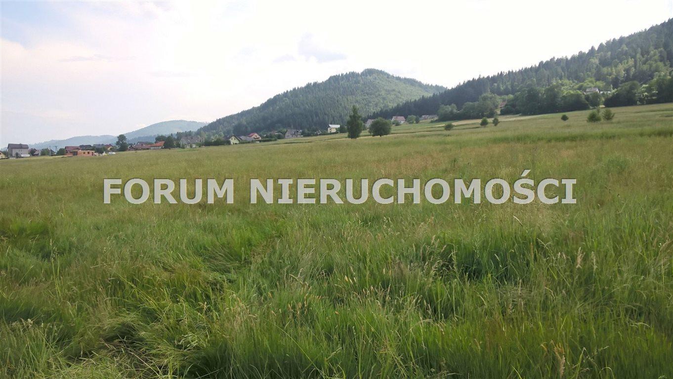 Działka rolna na sprzedaż Słotwina  1600m2 Foto 2