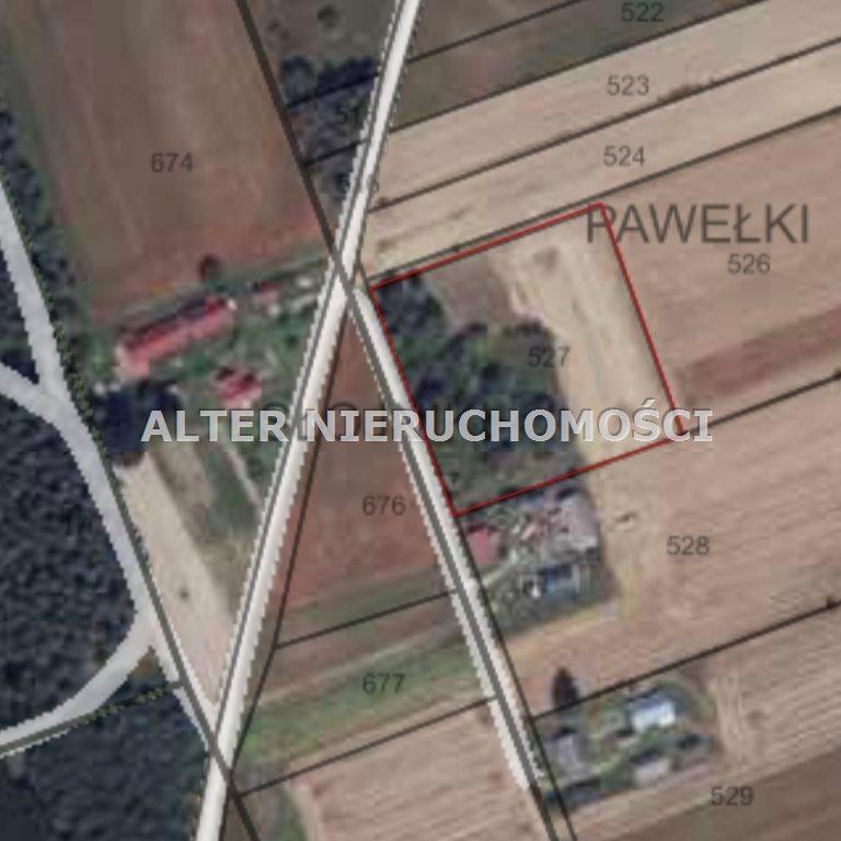 Działka rolna na sprzedaż Pawełki  8300m2 Foto 8
