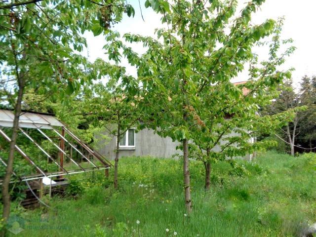 Działka budowlana na sprzedaż Nowy Dwór Mazowiecki, Prosta  1096m2 Foto 5