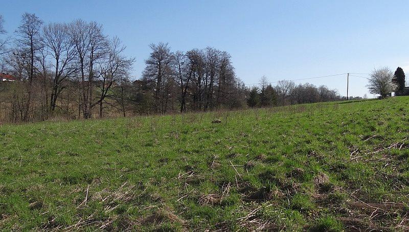 Działka siedliskowa na sprzedaż Międzyświeć  12100m2 Foto 3