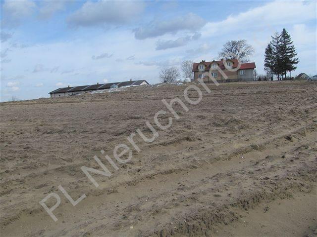 Działka rolna na sprzedaż Transbór  11200m2 Foto 6