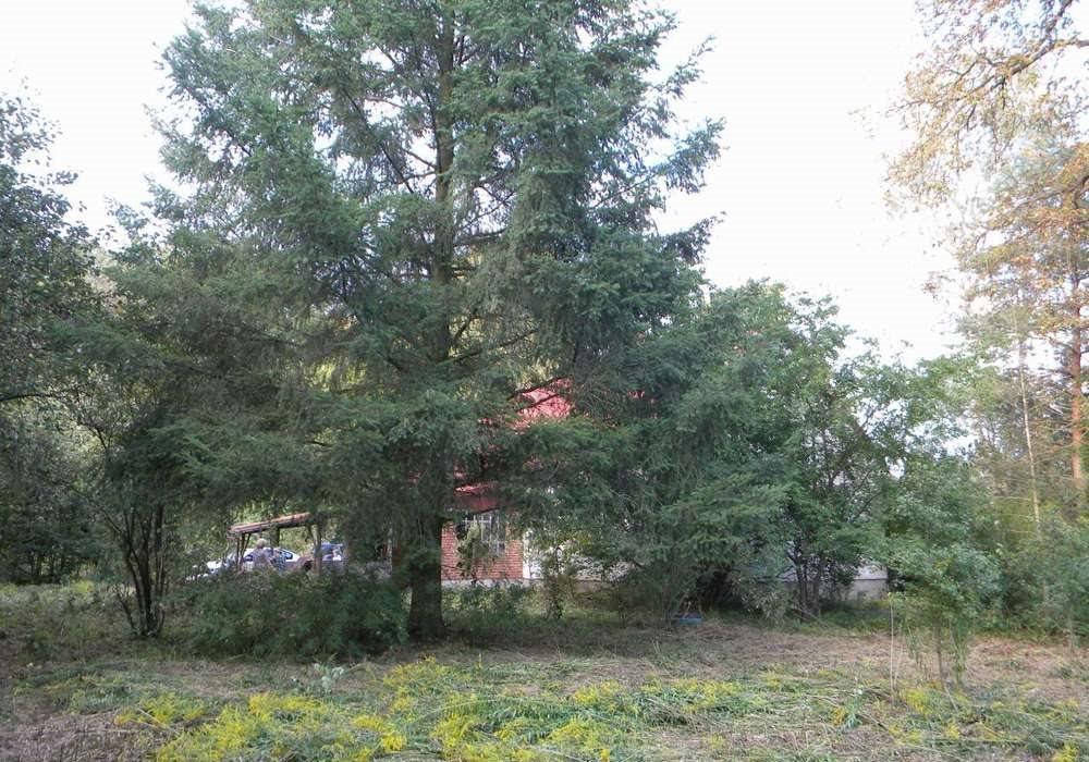 Dom na sprzedaż Tomaszów Mazowiecki, okolice  140m2 Foto 4