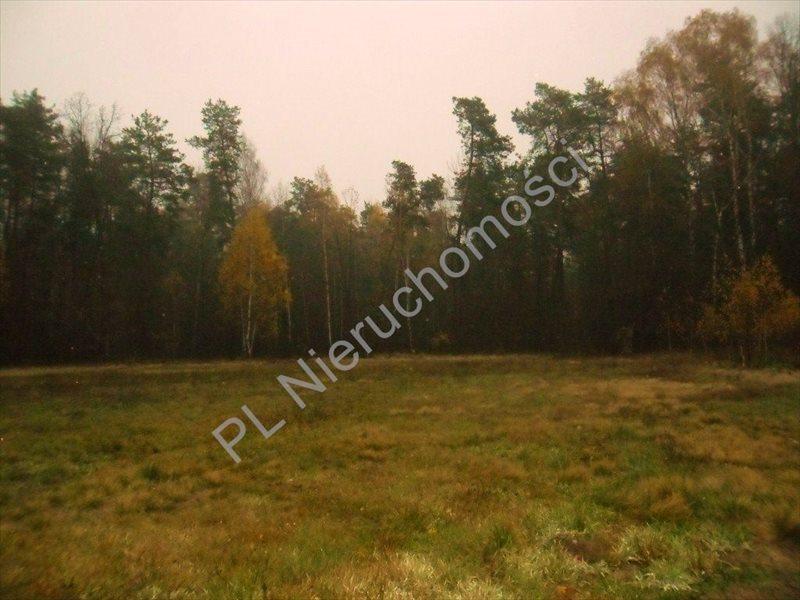Działka rolna na sprzedaż Rososz  13000m2 Foto 1