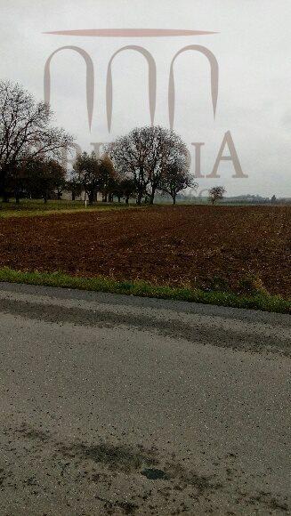 Działka inna na sprzedaż Tomaszowice  1800m2 Foto 2