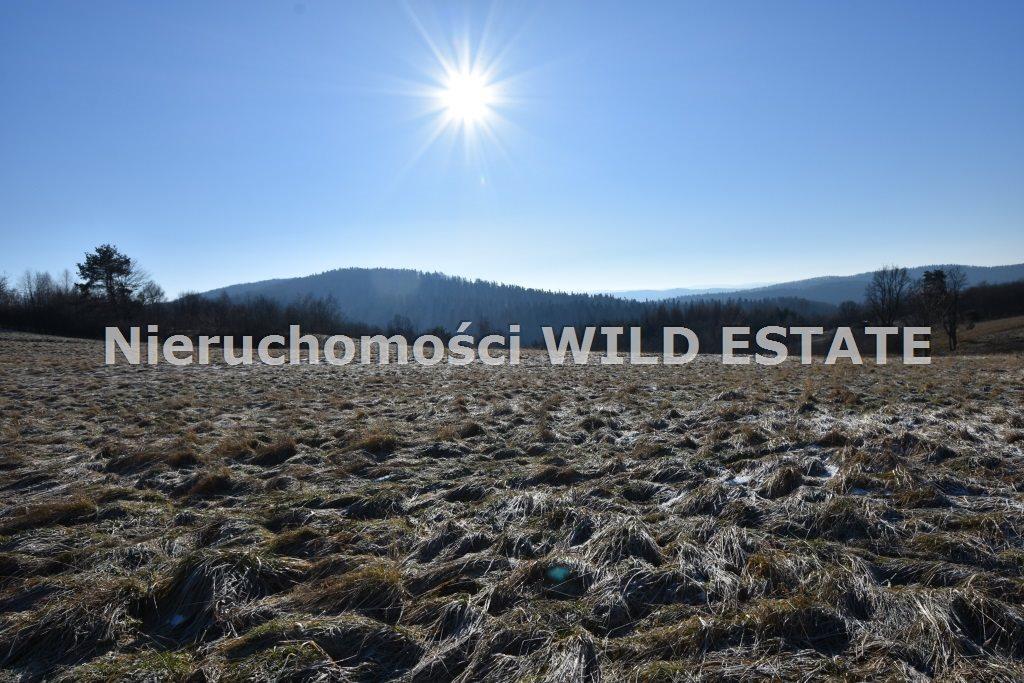 Działka rolna na sprzedaż LESKO, LESKO  8206m2 Foto 4