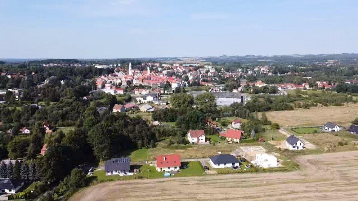 Działka rolna na sprzedaż Gryfów Śląski, Rzeczna  22430m2 Foto 4