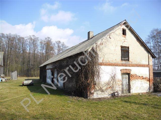 Działka siedliskowa na sprzedaż Olesin  9313m2 Foto 10