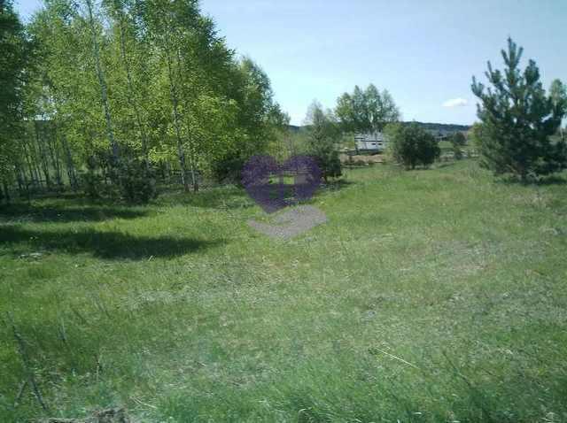 Działka rolna na sprzedaż Studzianki  1611m2 Foto 3