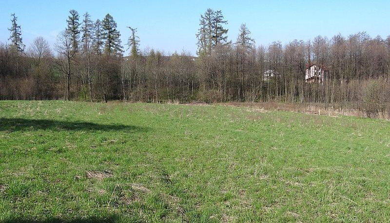 Działka siedliskowa na sprzedaż Międzyświeć  12100m2 Foto 1